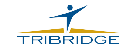 tribridge dark